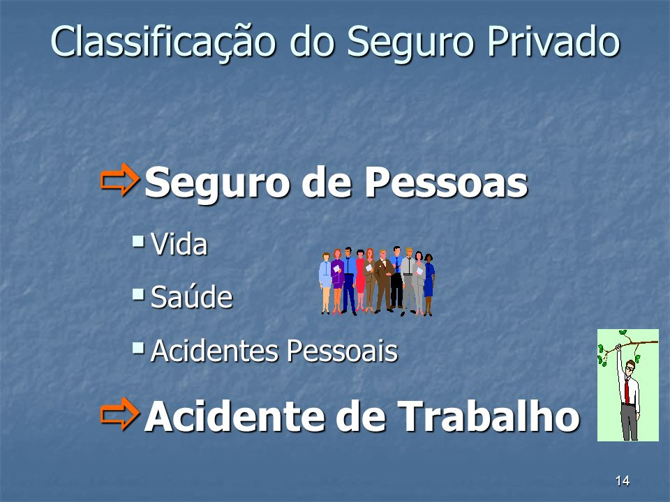 Classificação do Seguro Privado