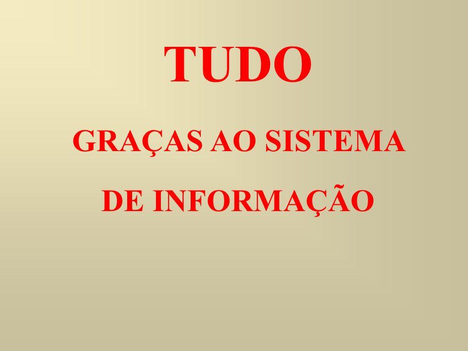 GRAÇAS AO SISTEMA DE INFORMAÇÃO