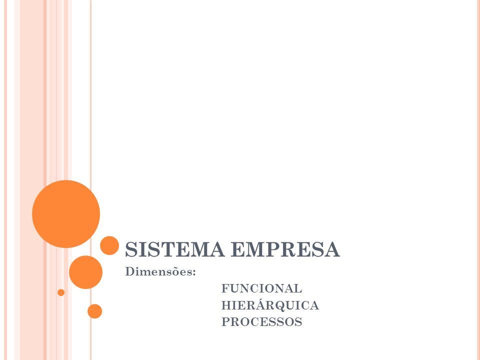 Dimensões: FUNCIONAL HIERÁRQUICA PROCESSOS