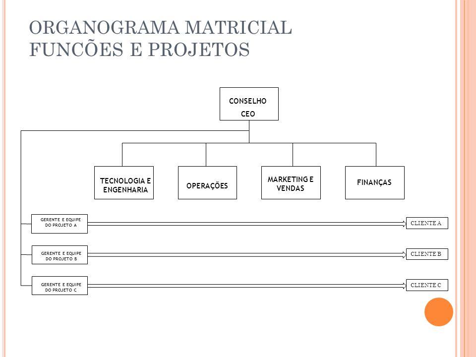 ORGANOGRAMA MATRICIAL FUNCÕES E PROJETOS