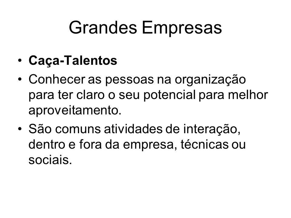 Grandes Empresas Caça-Talentos
