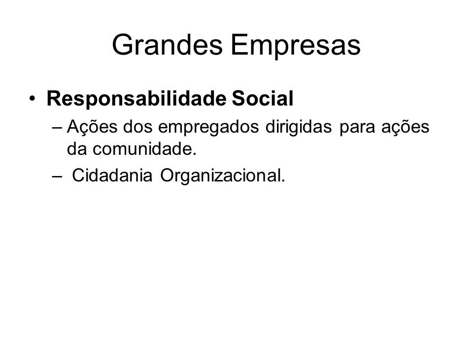 Grandes Empresas Responsabilidade Social