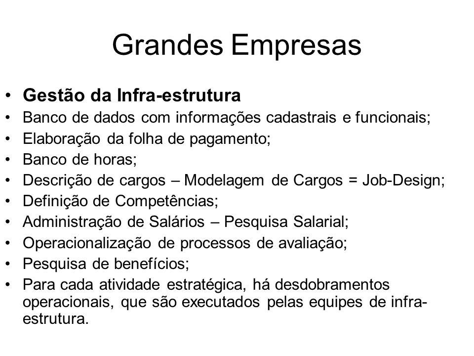 Grandes Empresas Gestão da Infra-estrutura