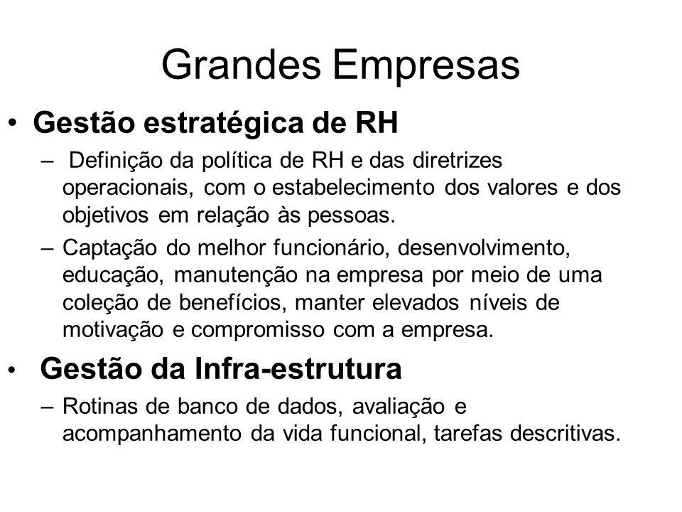 Grandes Empresas Gestão estratégica de RH Gestão da Infra-estrutura