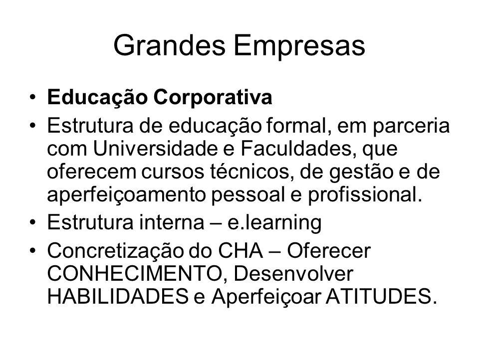 Grandes Empresas Educação Corporativa