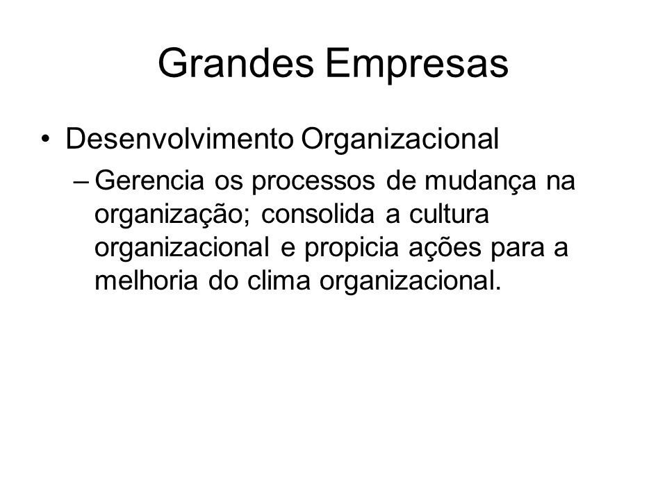 Grandes Empresas Desenvolvimento Organizacional