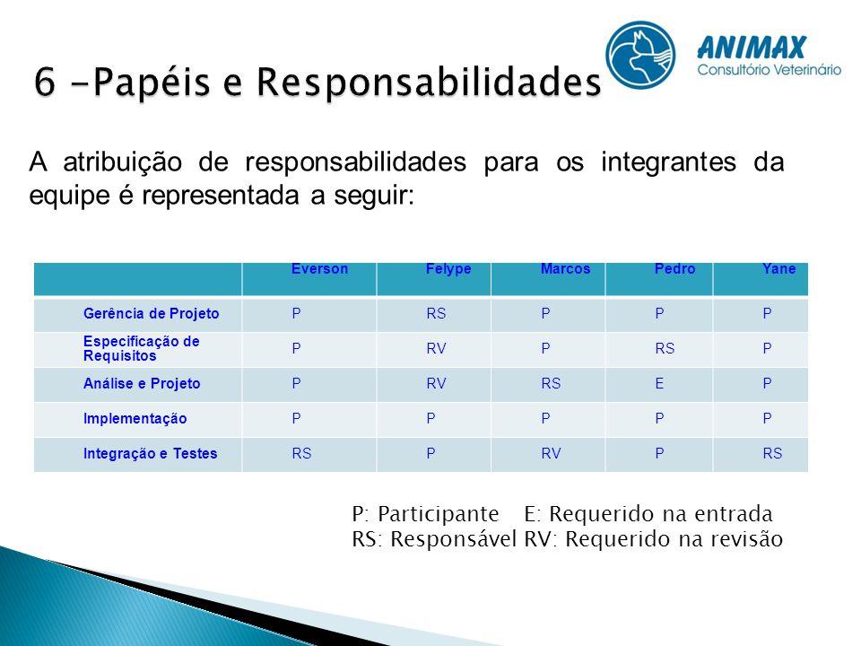 6 -Papéis e Responsabilidades