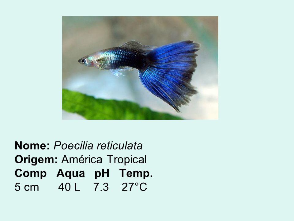 Nome: Poecilia reticulata Origem: América Tropical Comp Aqua pH Temp