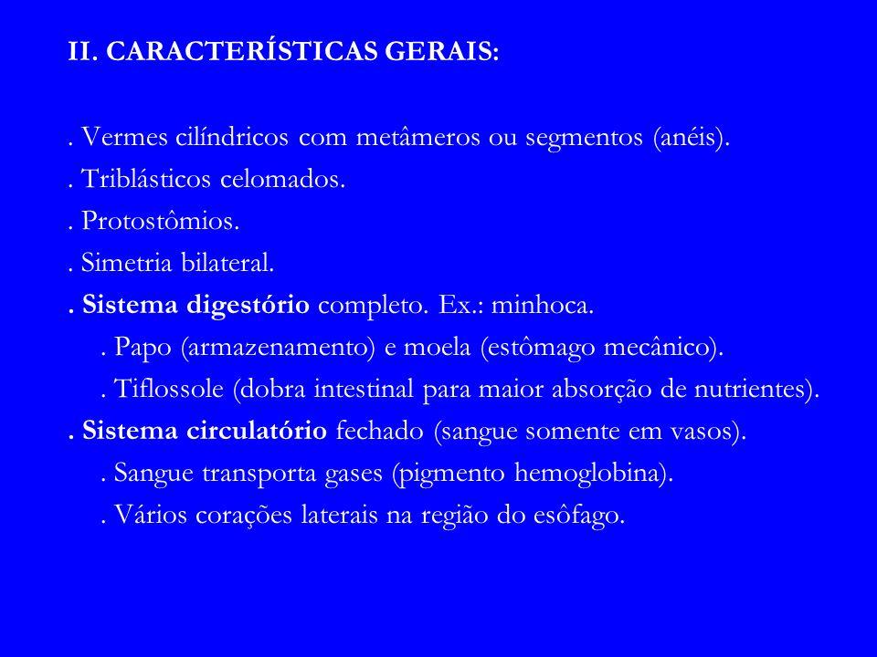II. CARACTERÍSTICAS GERAIS: