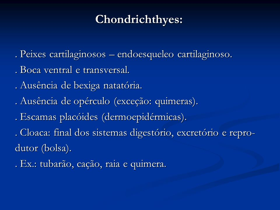 Chondrichthyes: . Peixes cartilaginosos – endoesqueleo cartilaginoso.