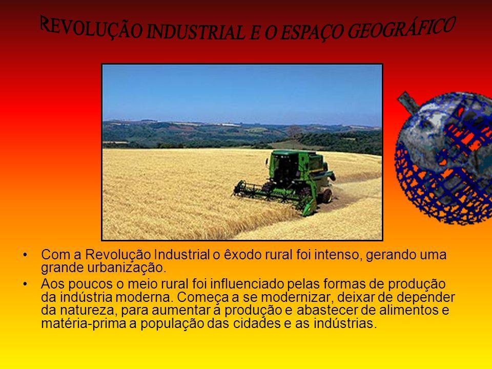 REVOLUÇÃO INDUSTRIAL E O ESPAÇO GEOGRÁFICO