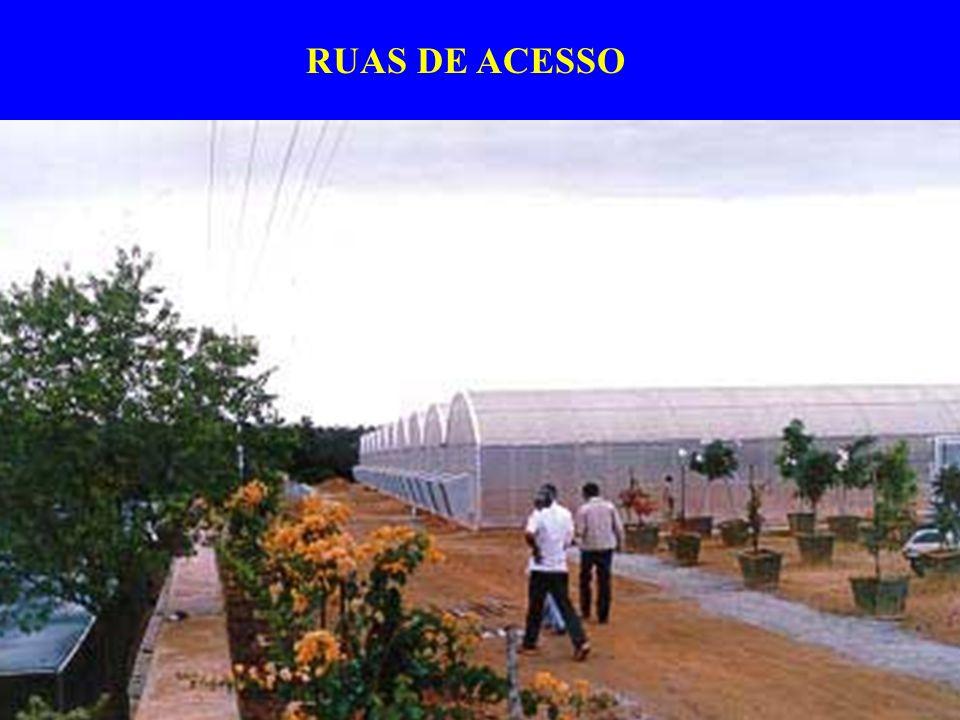 RUAS DE ACESSO