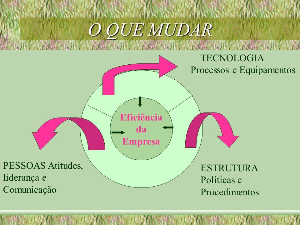 O QUE MUDAR TECNOLOGIA Processos e Equipamentos Eficiência da Empresa