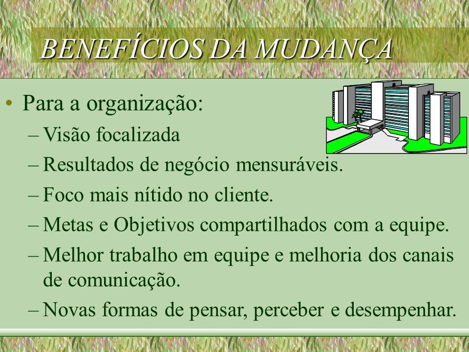 BENEFÍCIOS DA MUDANÇA Para a organização: Visão focalizada