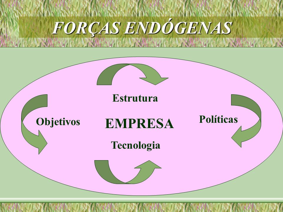 FORÇAS ENDÓGENAS Estrutura Políticas Objetivos EMPRESA Tecnologia