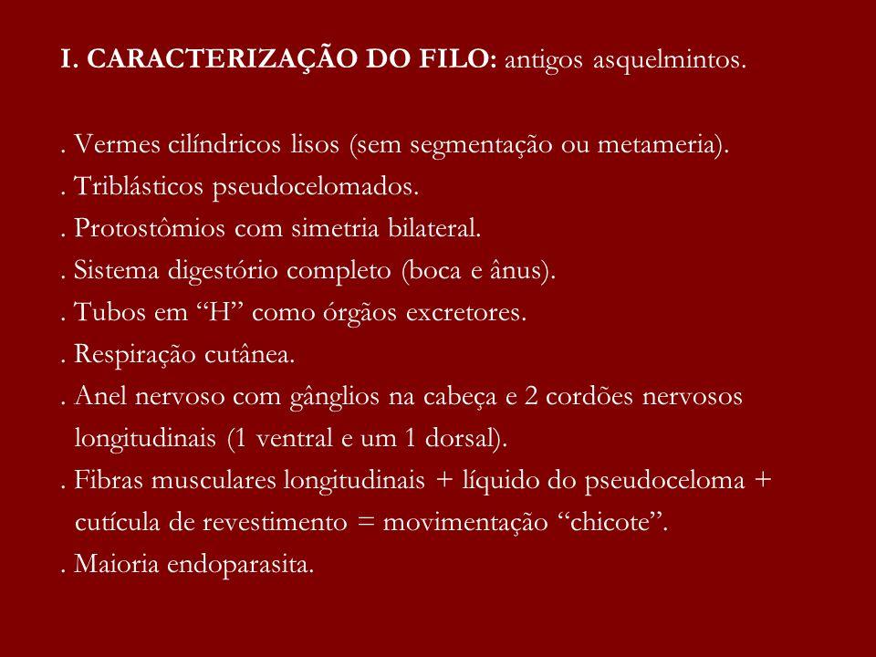I. CARACTERIZAÇÃO DO FILO: antigos asquelmintos.