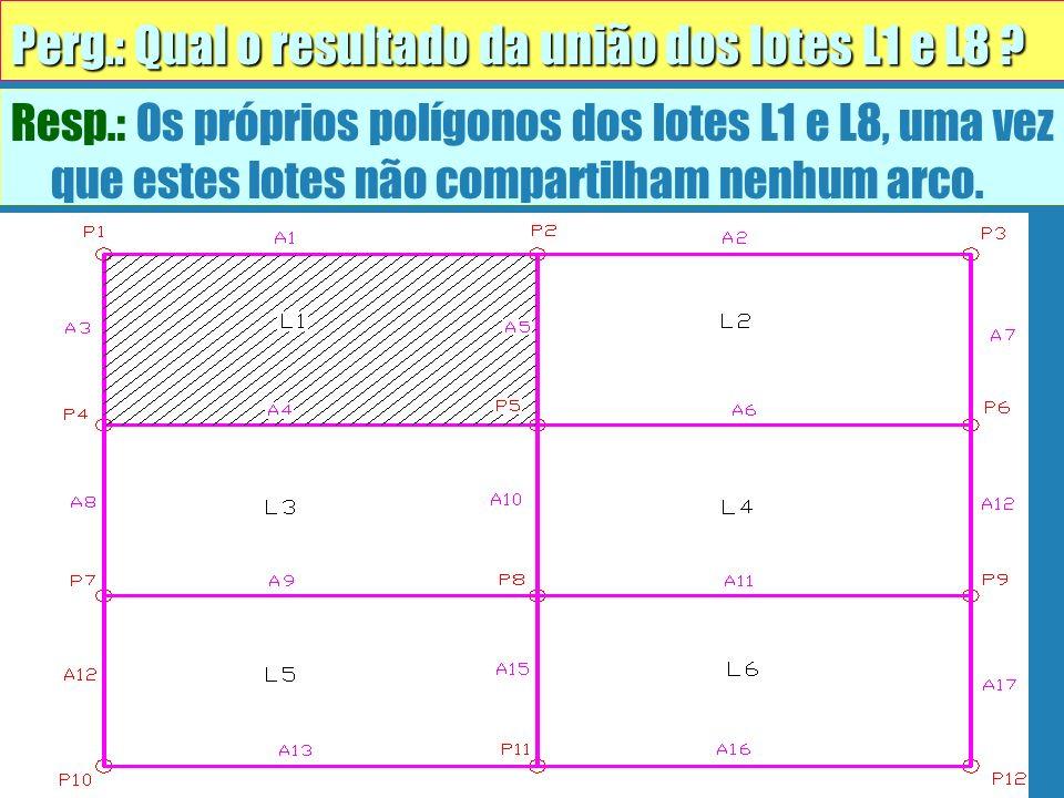 Perg.: Qual o resultado da união dos lotes L1 e L8