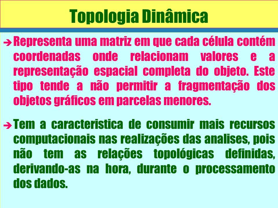 Topologia Dinâmica