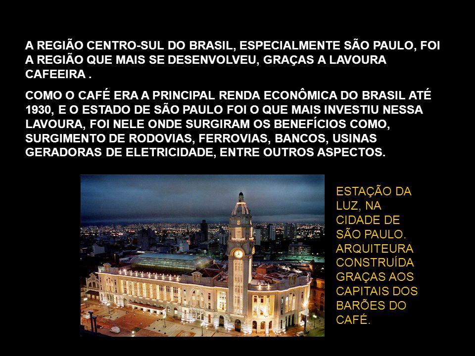 A REGIÃO CENTRO-SUL DO BRASIL, ESPECIALMENTE SÃO PAULO, FOI A REGIÃO QUE MAIS SE DESENVOLVEU, GRAÇAS A LAVOURA CAFEEIRA .
