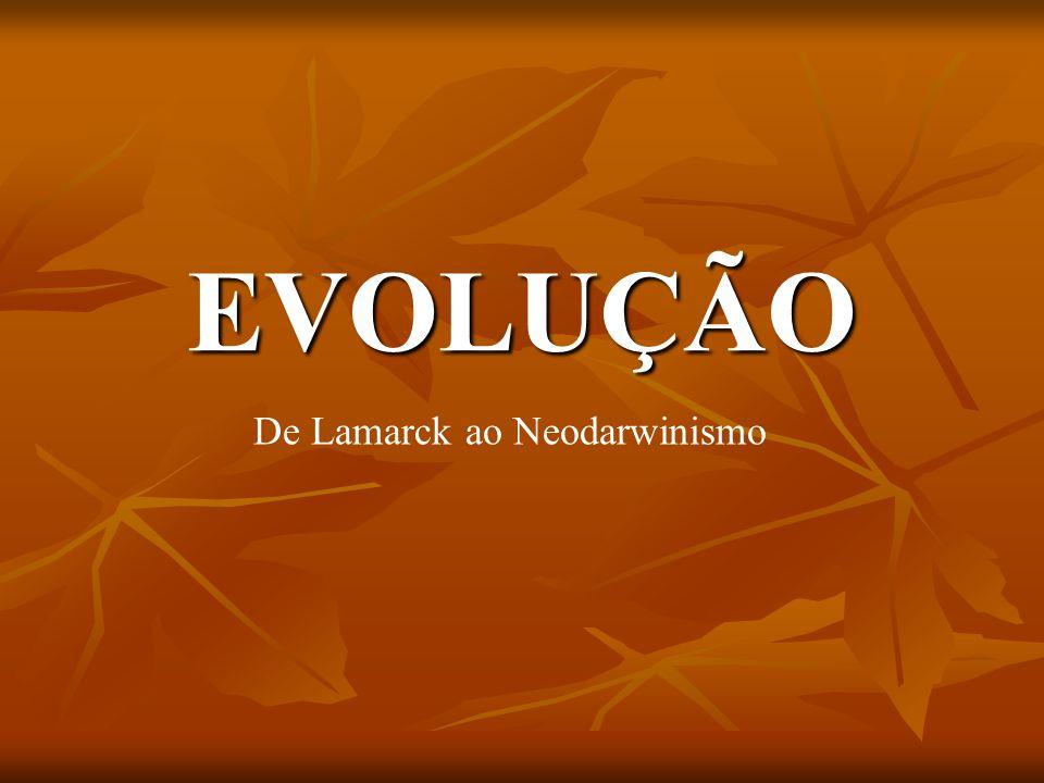 EVOLUÇÃO De Lamarck ao Neodarwinismo