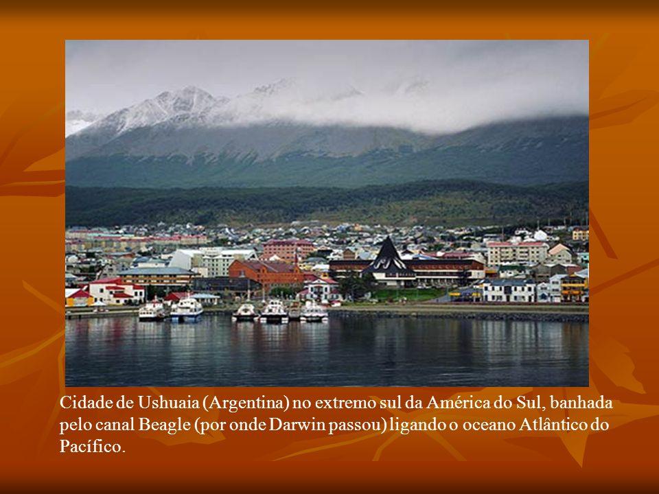 Cidade de Ushuaia (Argentina) no extremo sul da América do Sul, banhada