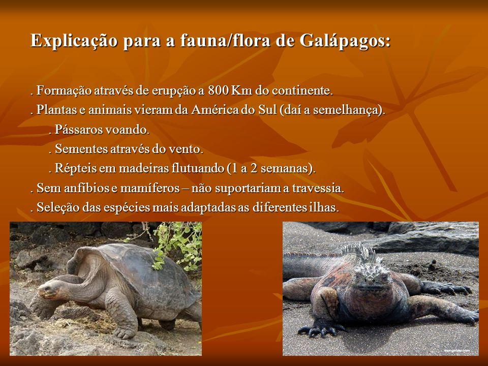 Explicação para a fauna/flora de Galápagos: