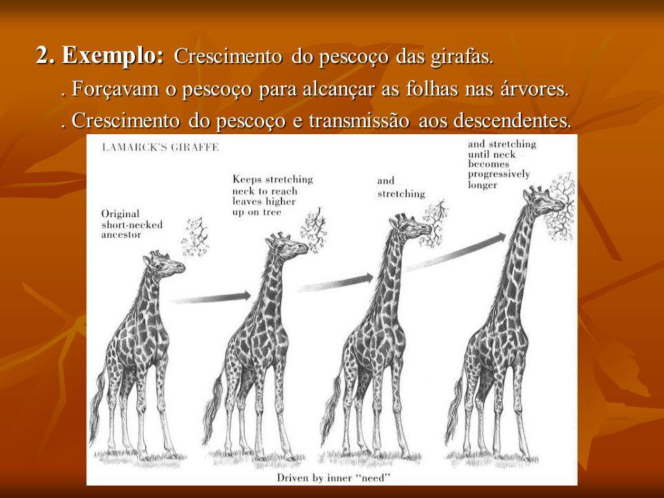 2. Exemplo: Crescimento do pescoço das girafas.