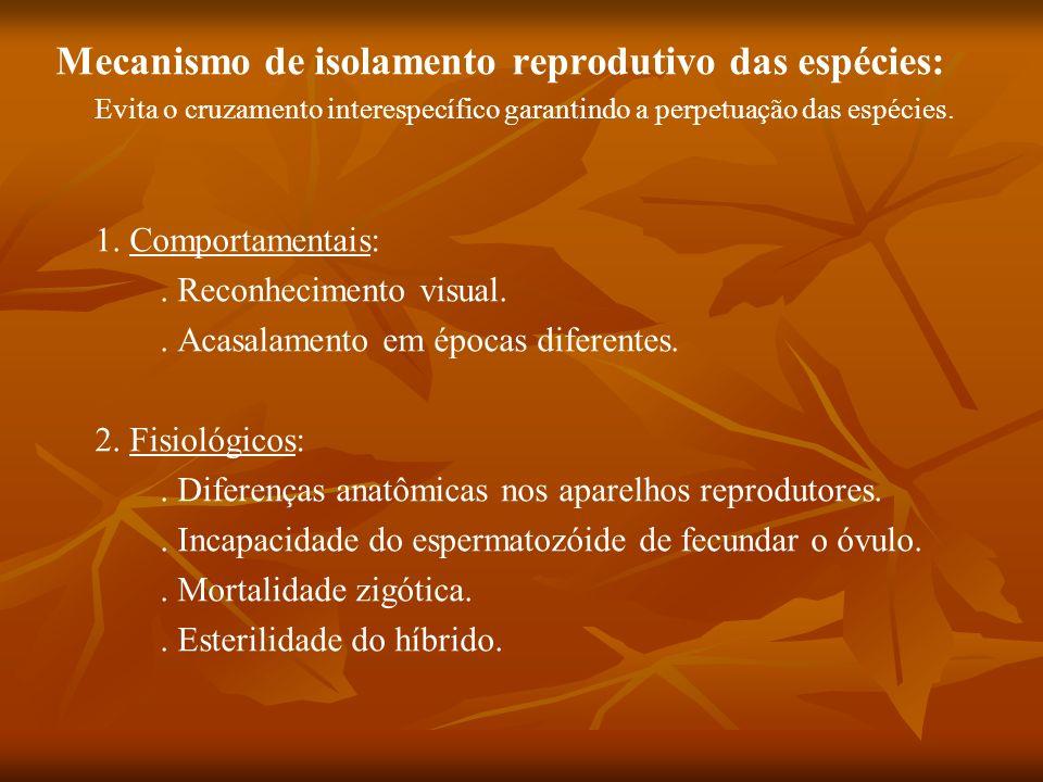 Mecanismo de isolamento reprodutivo das espécies: