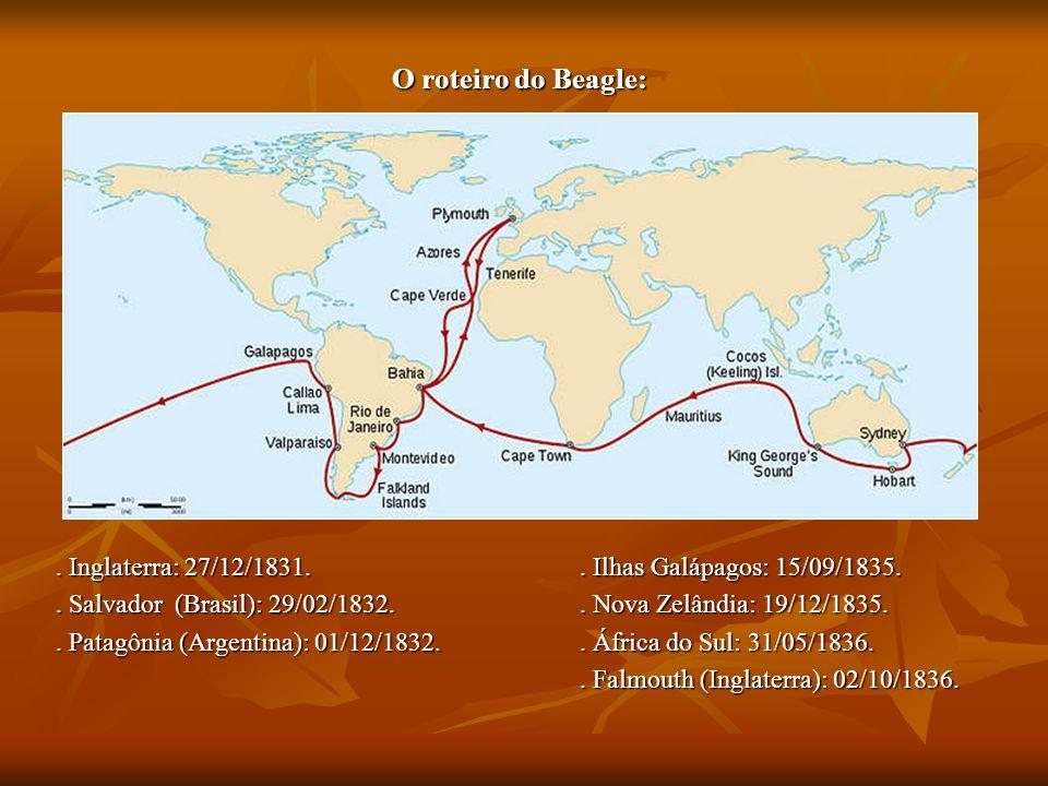 O roteiro do Beagle: . Inglaterra: 27/12/1831. . Ilhas Galápagos: 15/09/1835. . Salvador (Brasil): 29/02/1832. . Nova Zelândia: 19/12/1835.