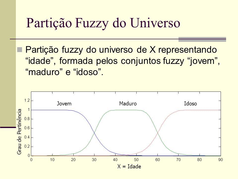 Partição Fuzzy do Universo