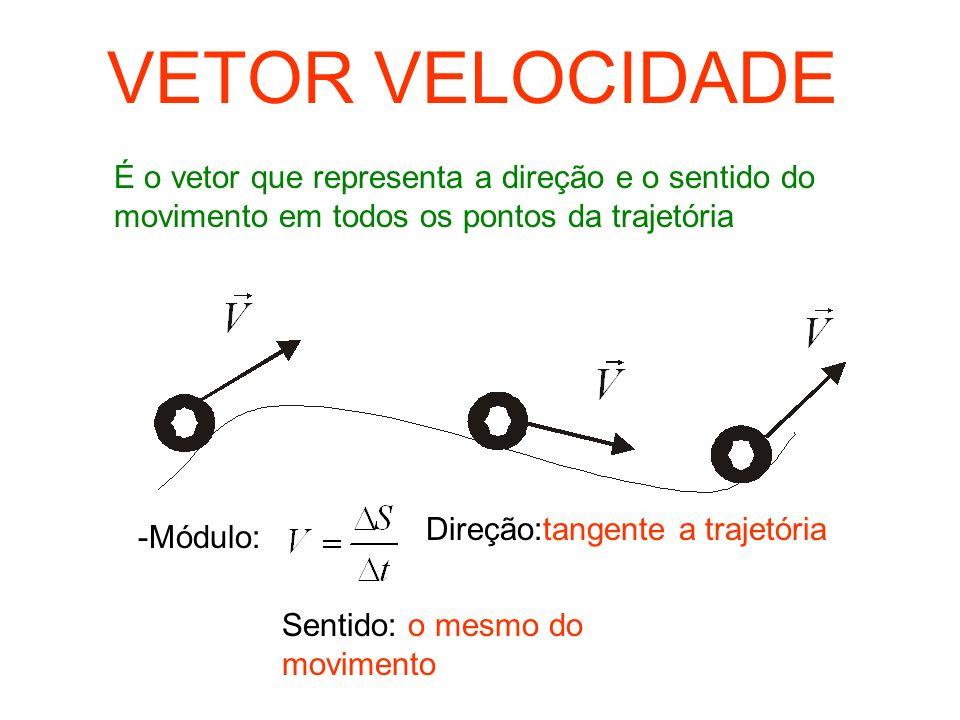 VETOR VELOCIDADEÉ o vetor que representa a direção e o sentido do movimento em todos os pontos da trajetória.