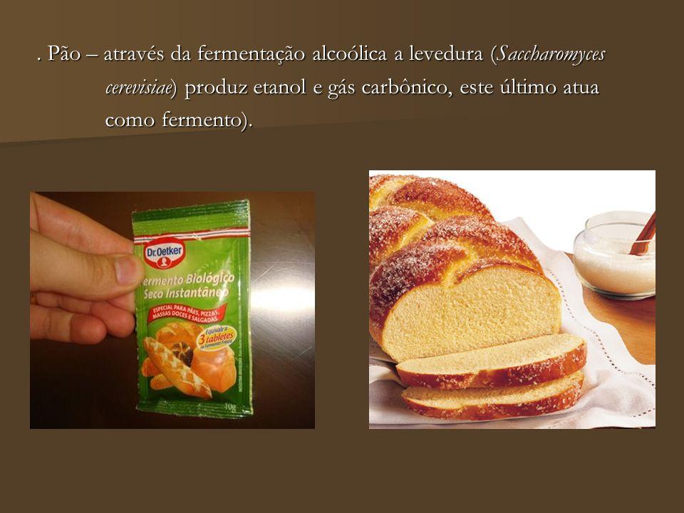 . Pão – através da fermentação alcoólica a levedura (Saccharomyces