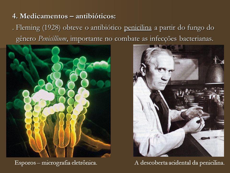 4. Medicamentos – antibióticos: