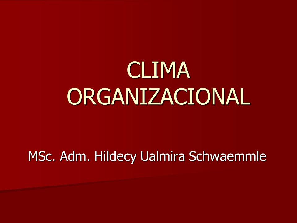 MSc. Adm. Hildecy Ualmira Schwaemmle