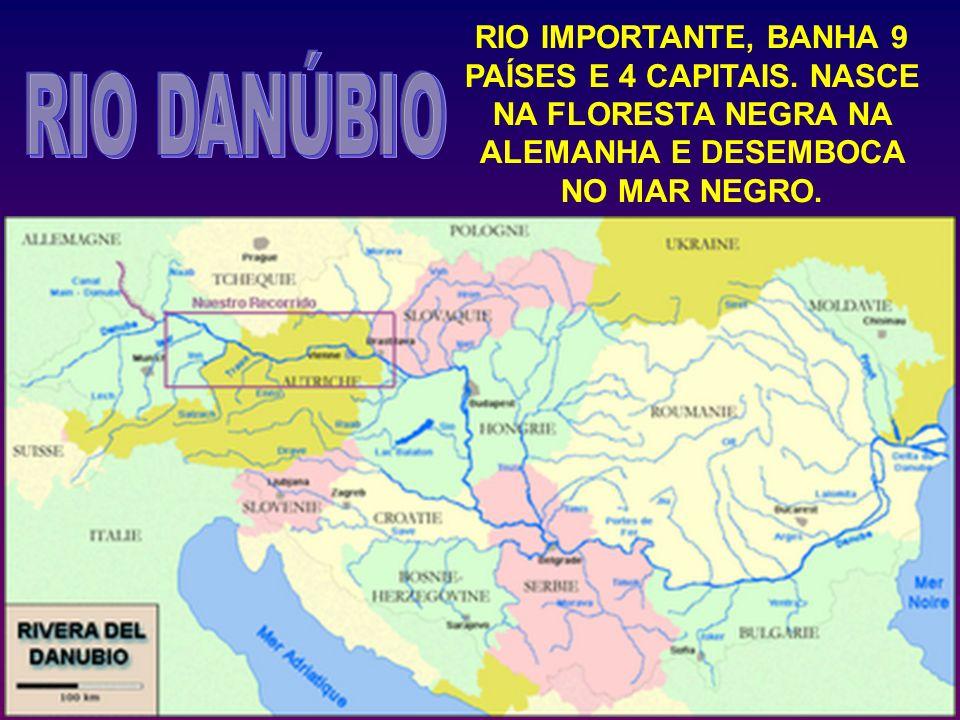 RIO IMPORTANTE, BANHA 9 PAÍSES E 4 CAPITAIS