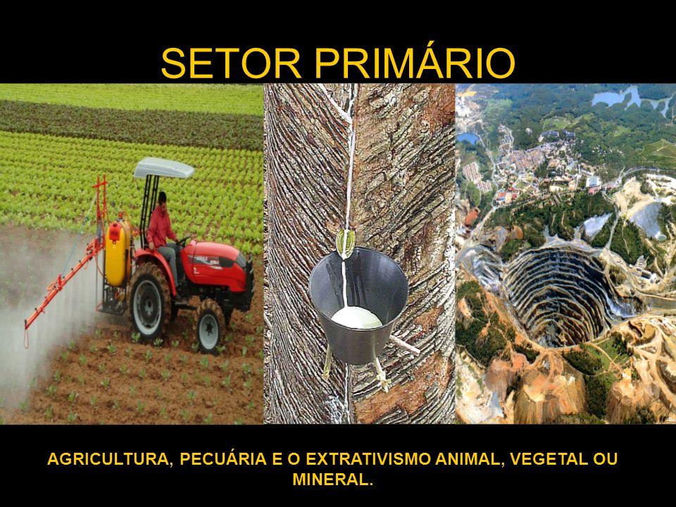 AGRICULTURA, PECUÁRIA E O EXTRATIVISMO ANIMAL, VEGETAL OU MINERAL.