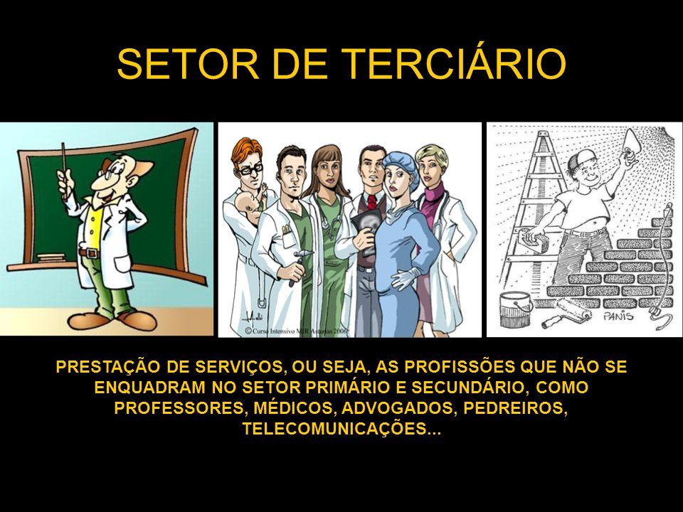 SETOR DE TERCIÁRIO