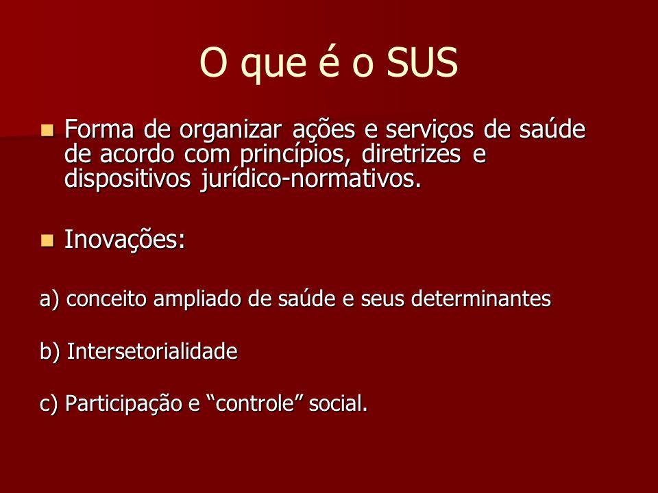 O que é o SUS Forma de organizar ações e serviços de saúde de acordo com princípios, diretrizes e dispositivos jurídico-normativos.