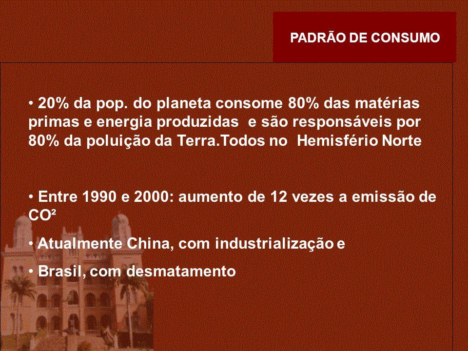 Entre 1990 e 2000: aumento de 12 vezes a emissão de CO²