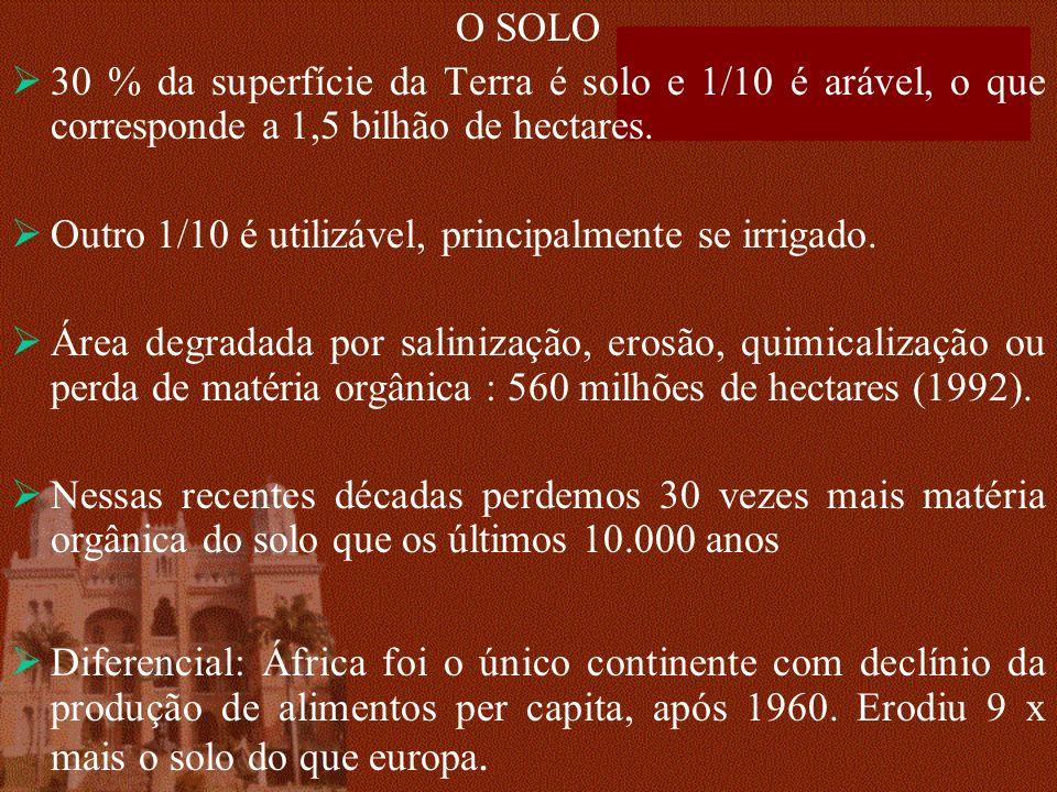 O SOLO 30 % da superfície da Terra é solo e 1/10 é arável, o que corresponde a 1,5 bilhão de hectares.