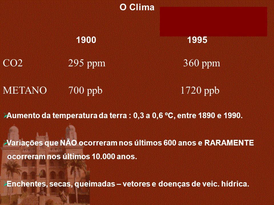 CO2 295 ppm 360 ppm METANO 700 ppb 1720 ppb O Clima 1900 1995