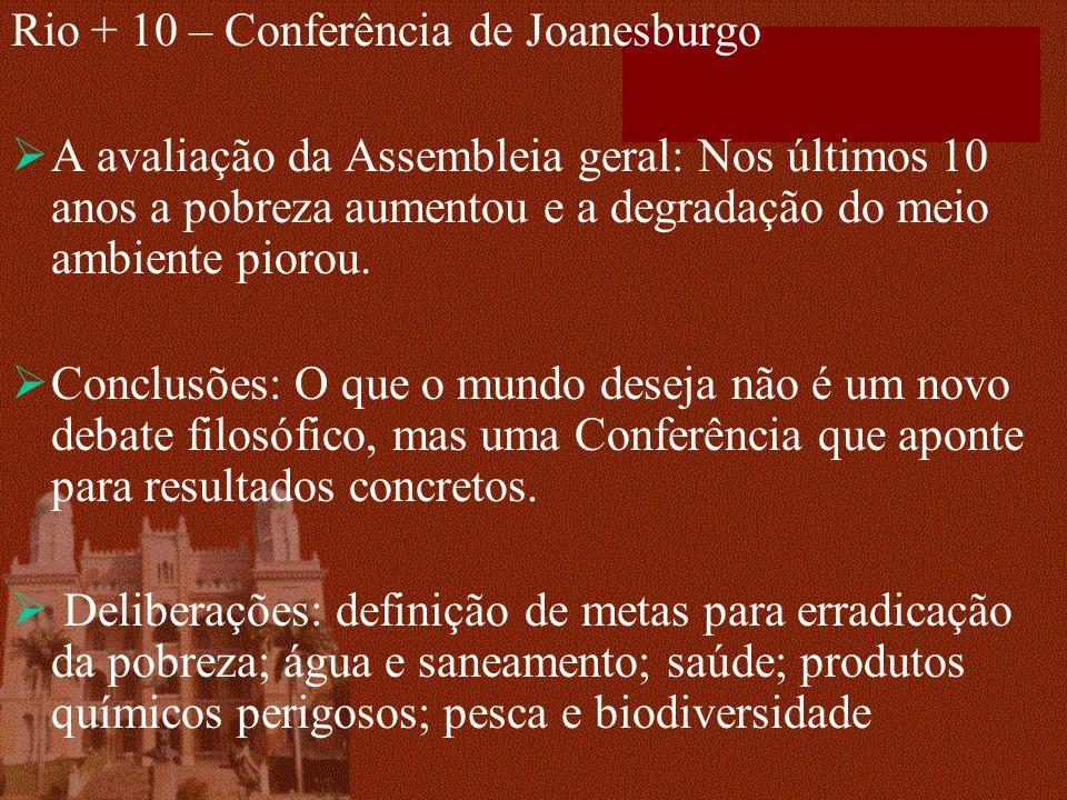 Rio + 10 – Conferência de Joanesburgo