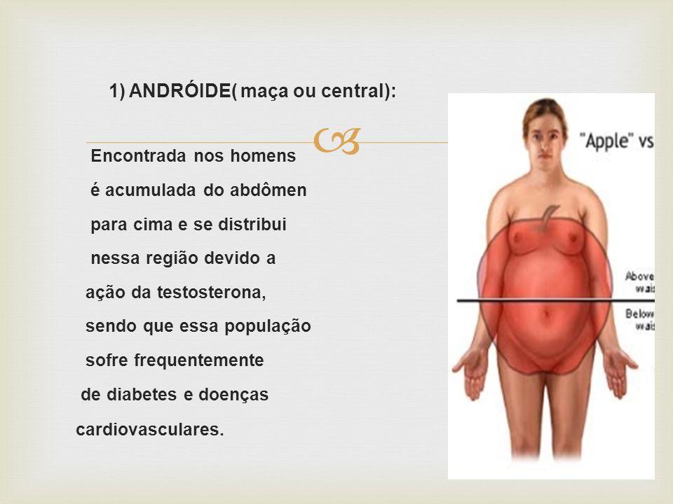 1) ANDRÓIDE( maça ou central):