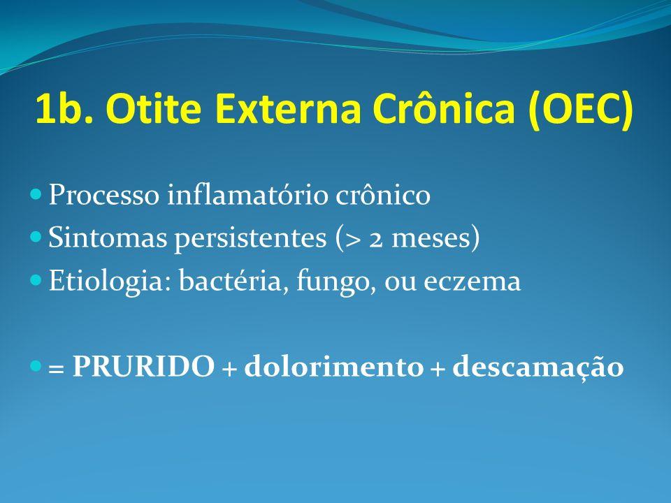 1b. Otite Externa Crônica (OEC)