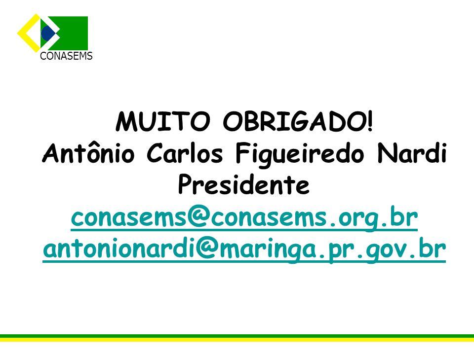 Antônio Carlos Figueiredo Nardi