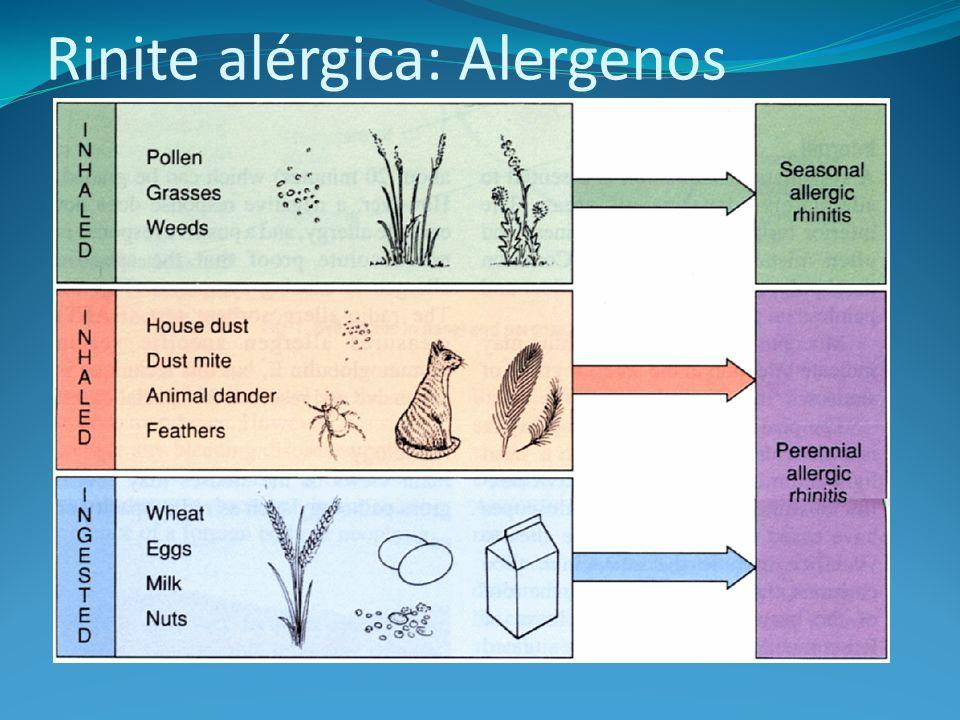 Rinite alérgica: Alergenos
