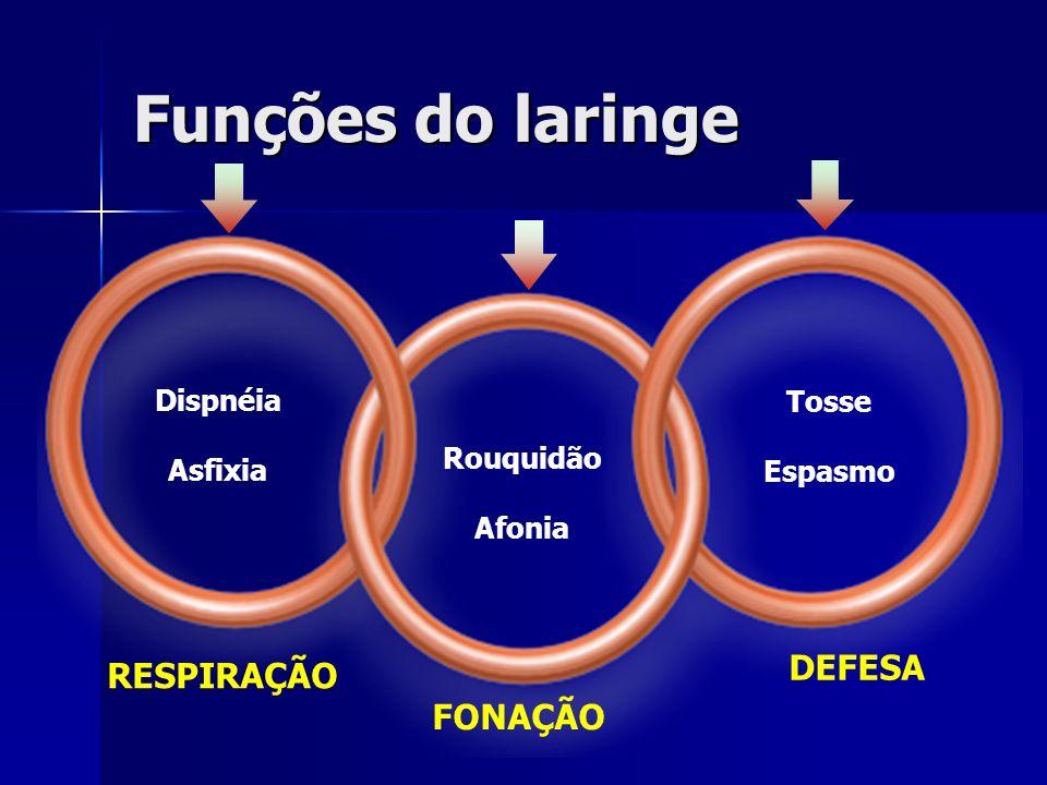 Funções do laringe DEFESA RESPIRAÇÃO FONAÇÃO Tosse Dispnéia Espasmo