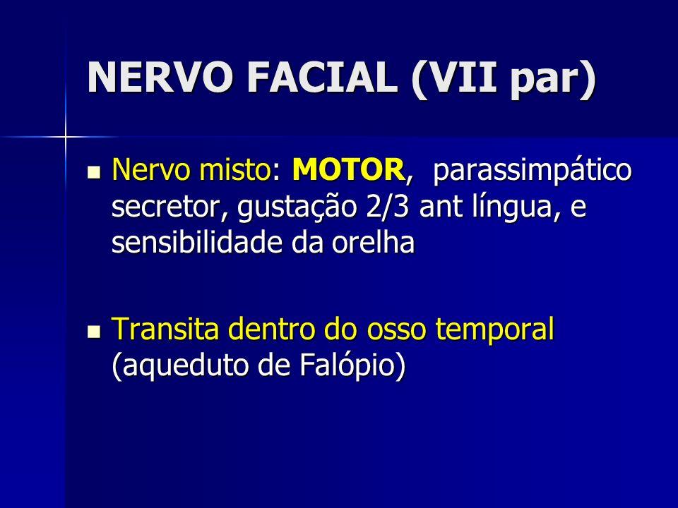 NERVO FACIAL (VII par) Nervo misto: MOTOR, parassimpático secretor, gustação 2/3 ant língua, e sensibilidade da orelha.