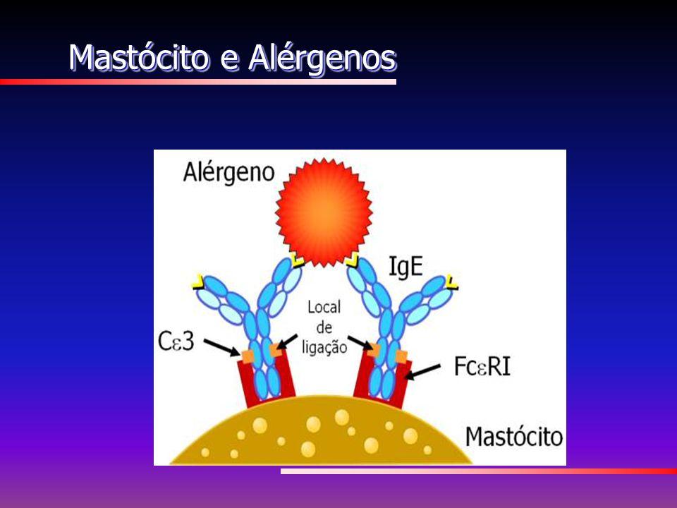 Mastócito e Alérgenos