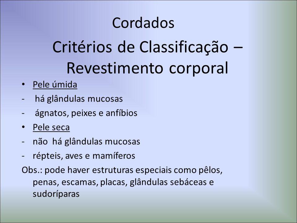 Critérios de Classificação – Revestimento corporal